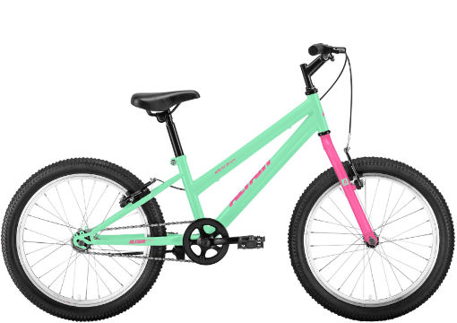 ALTAIR MTB HT 20 low (2020)